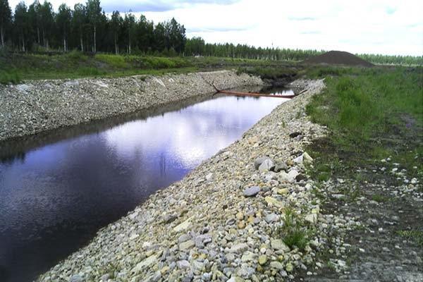 sentuntee_kuopion_energia_tuotanto_luontoystavallinen_bioenergia_71-1