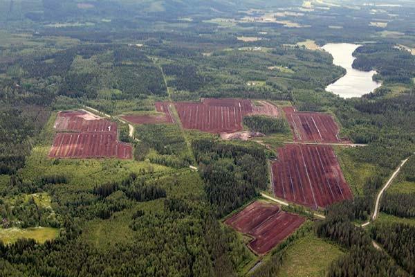 sentuntee_kuopion_energia_turve_turvetuotanto_luontoystavallinen_bioenergia_78-1