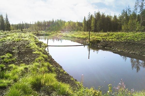 sentuntee_kuopion_energia_tuotanto_turve_kylysuo